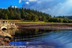 Historic bridge at Fernworthy reservoir